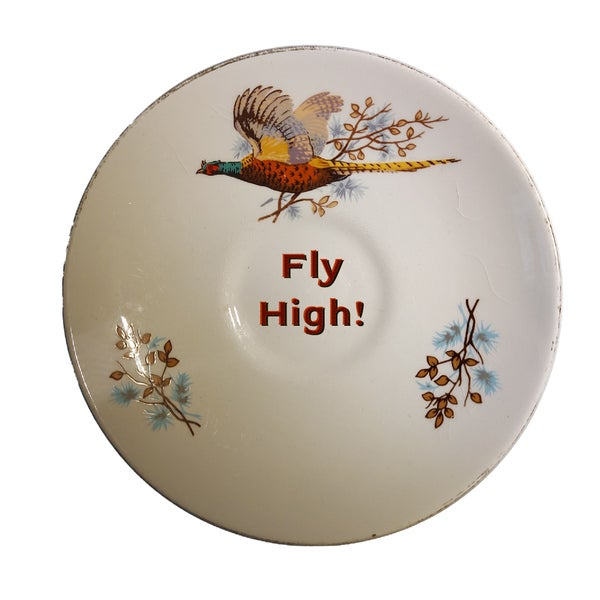 Image of FLY HIGH! (ref. 39)