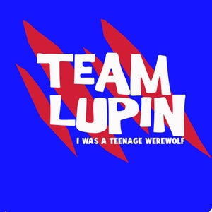 Image of Team Lupin - The Remus Lupins T-Shirt *CLASSIC*