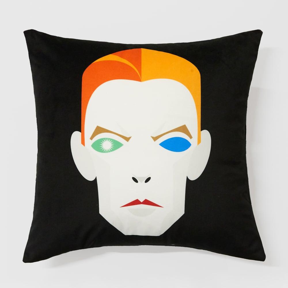 Image of David B cushion