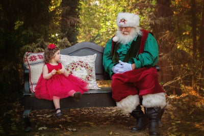 Image of *Private Event* - Santa and Family Mini-sessions - Sunday, November 15th