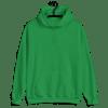 Brock Lee Companion Embroidered Hoodie Green