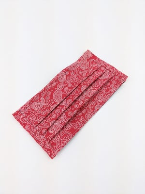 Pleated Mask * Red Paisley
