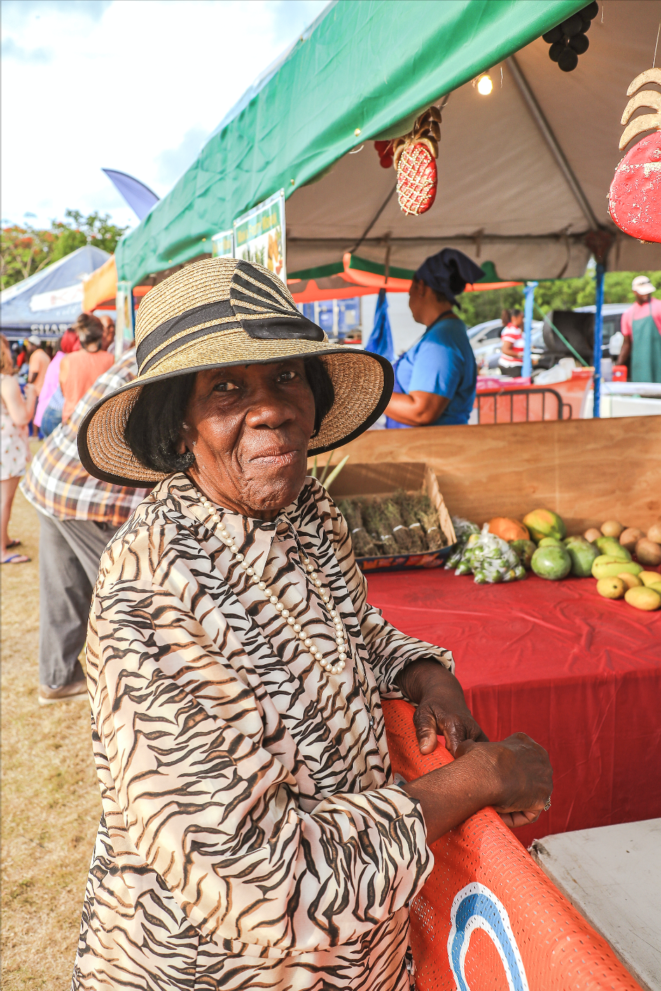 Image of At The Pineapple Festival