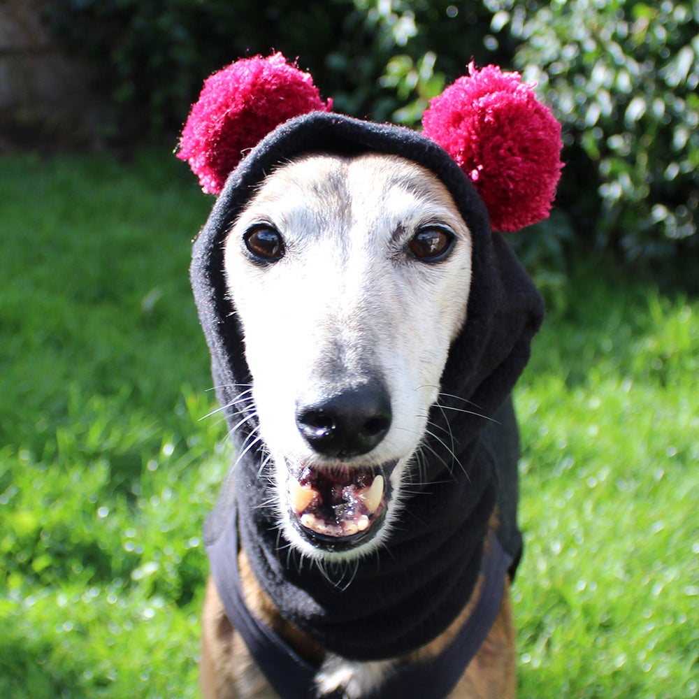 Image of Snood with ears