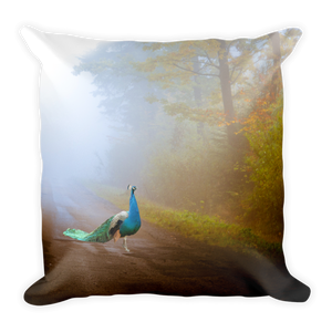 Image of Plate No.65 Throw Pillow