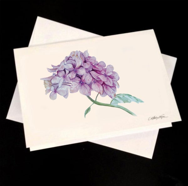 Image of Hydrangea, 5-Pack Greeting Card Set