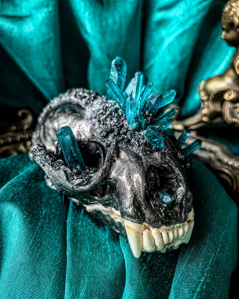 Image of Mermaid Blue Quartz & Carborundum - Badger Skull