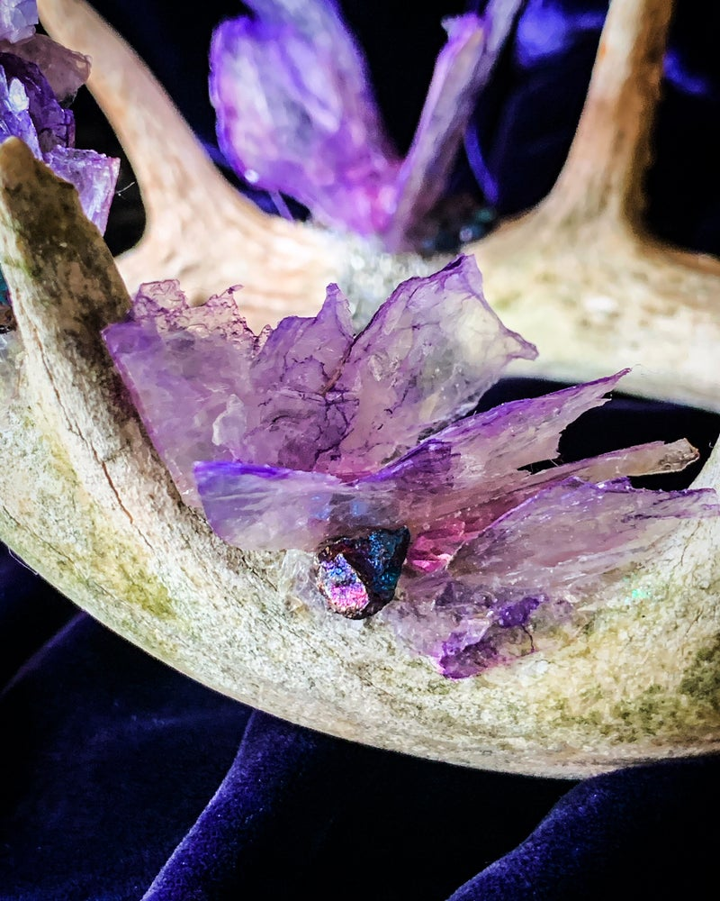 Image of Purple Mica Butterfly Aura Quartz Clear Quartz  & Chalcopyrite - Antler Crown