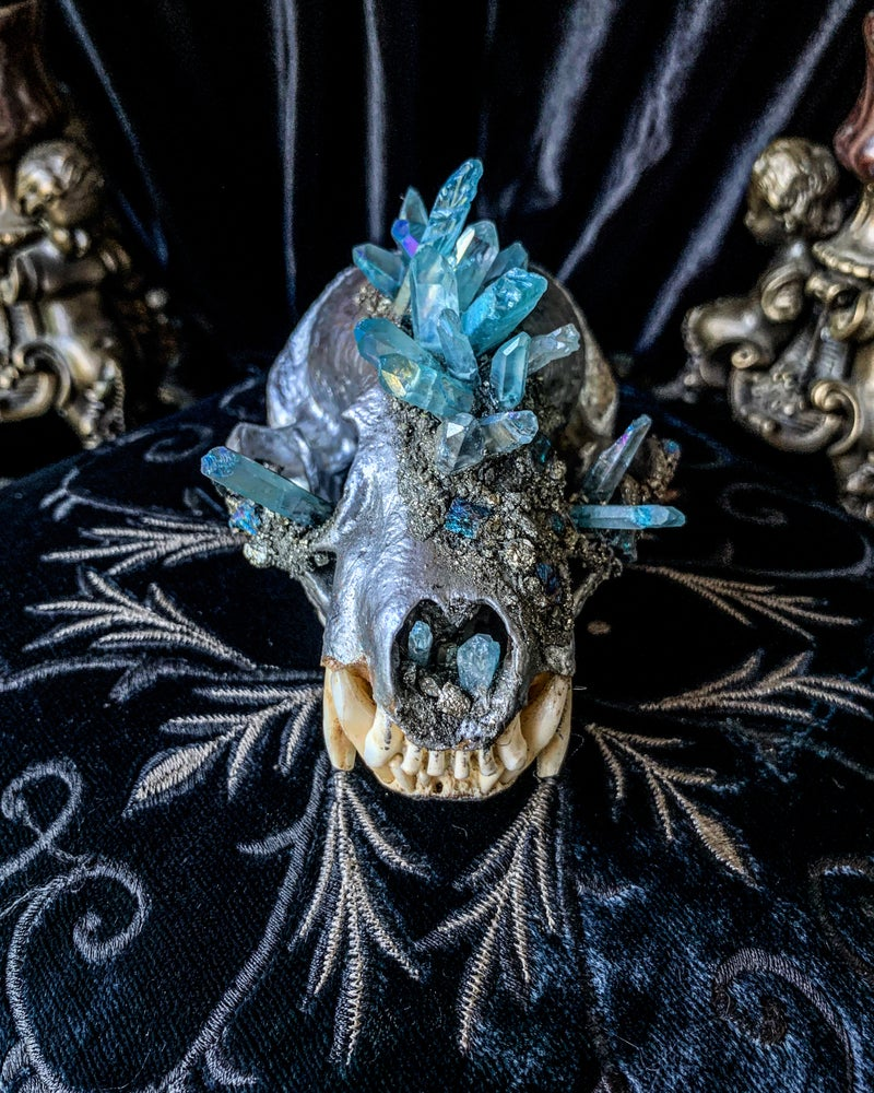 Image of Baby Blue Aura Quartz & Chalcopyrite - Badger Skull