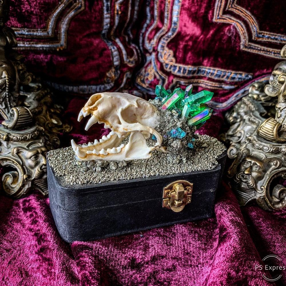 Image of Green Aura Quartz - Mink Skull Coffin Box