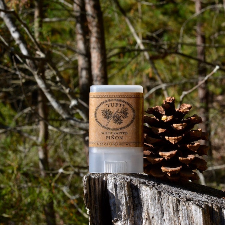 Image of NEW! Wildcrafted Piñon Balm
