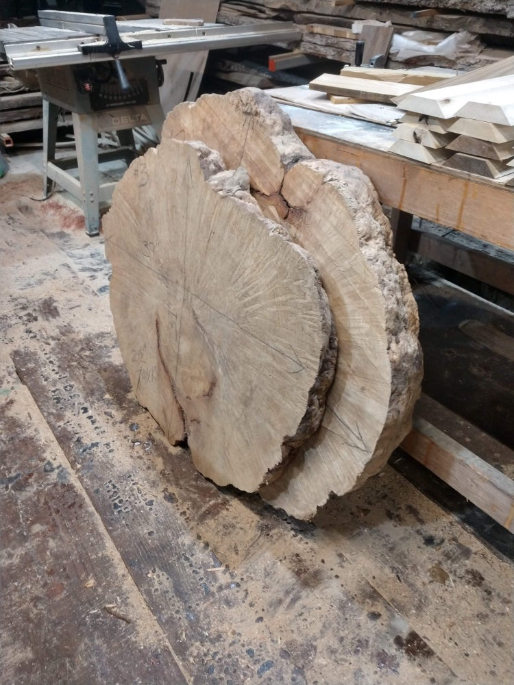Image of Red Bay Burl Slab