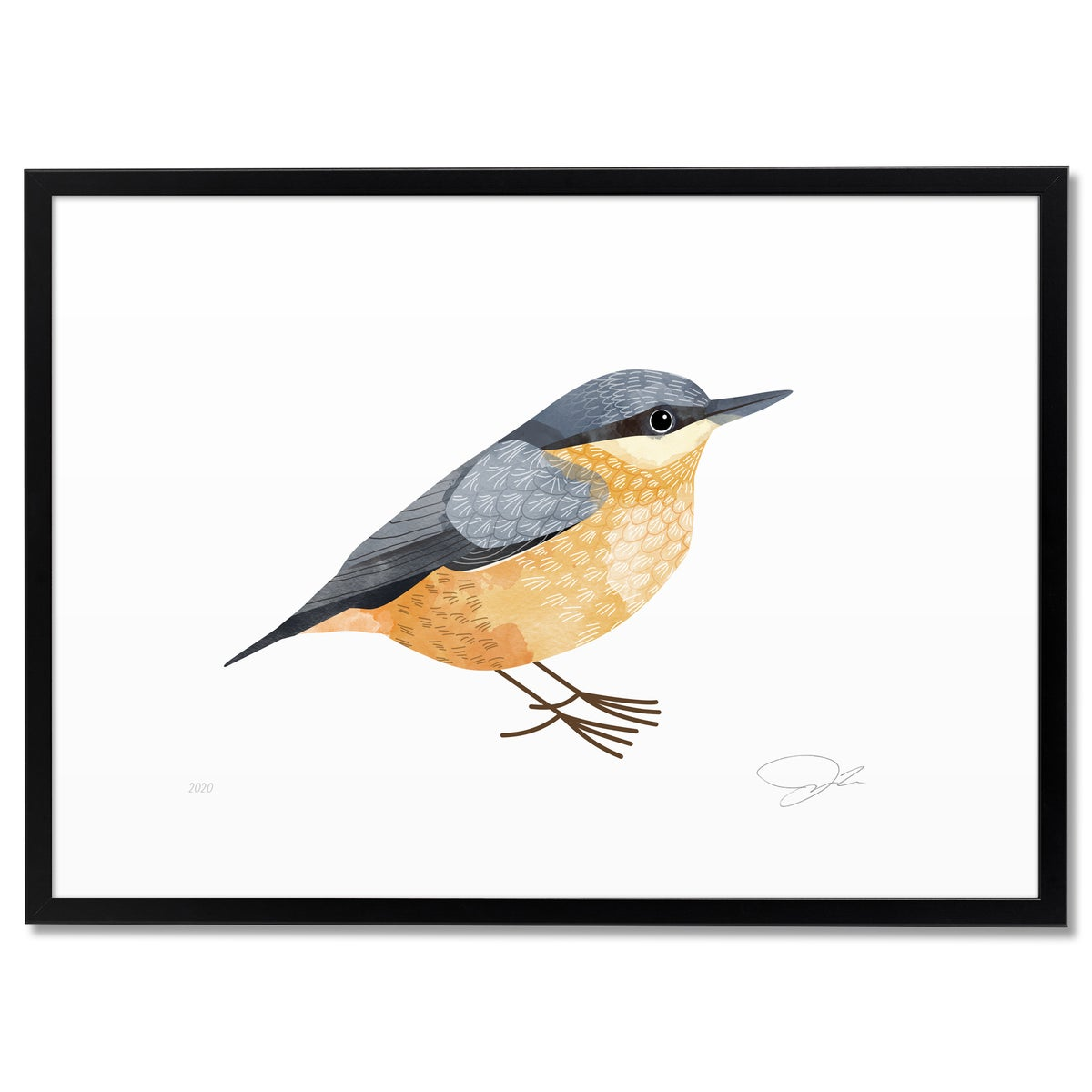 Image of Print: Nuthatch (Kleiber)
