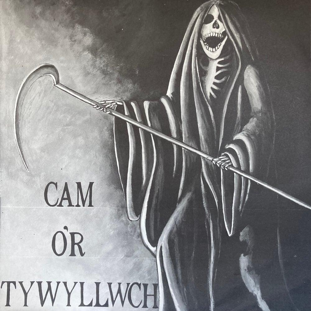Image of Various - Cam O'r Tywyllwch