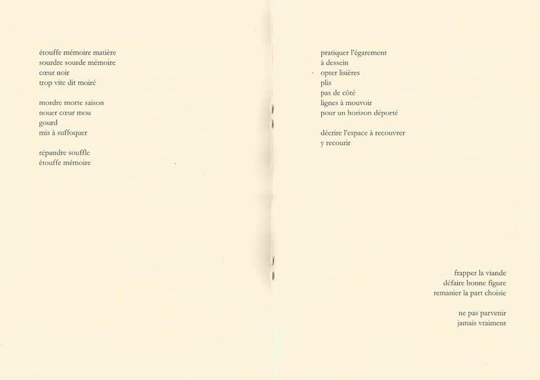 Image of pariah 11 : Johan Grzelczyk, pointe sèche