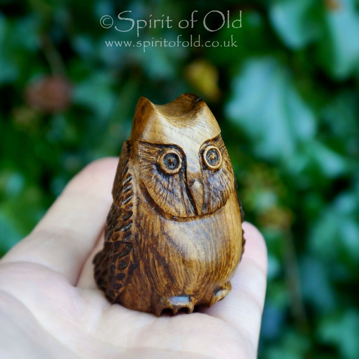 Image of Ancient oak owl amulet (DAM431)