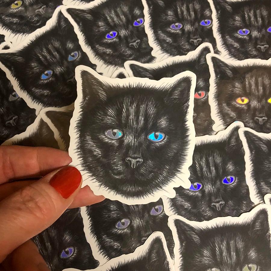 Image of Black Cat Sticker