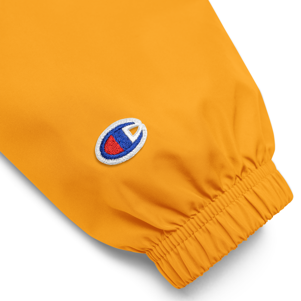 Image of Champion Bandaid Pullover