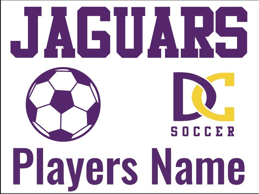 Image of DC SOCCER YARD SIGN