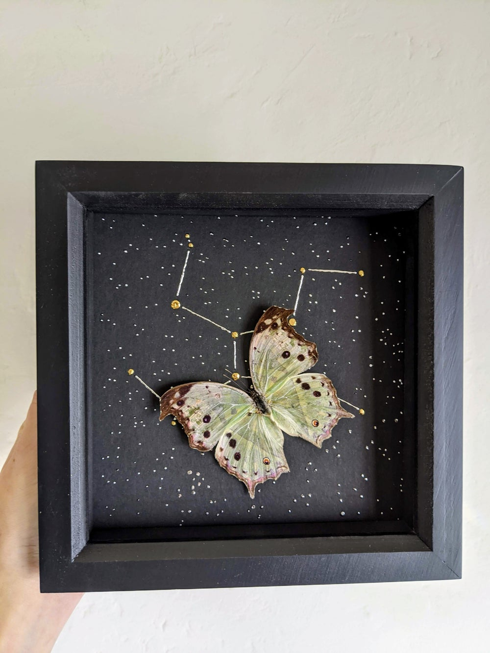 Constellation Mother Of Pearl Frames