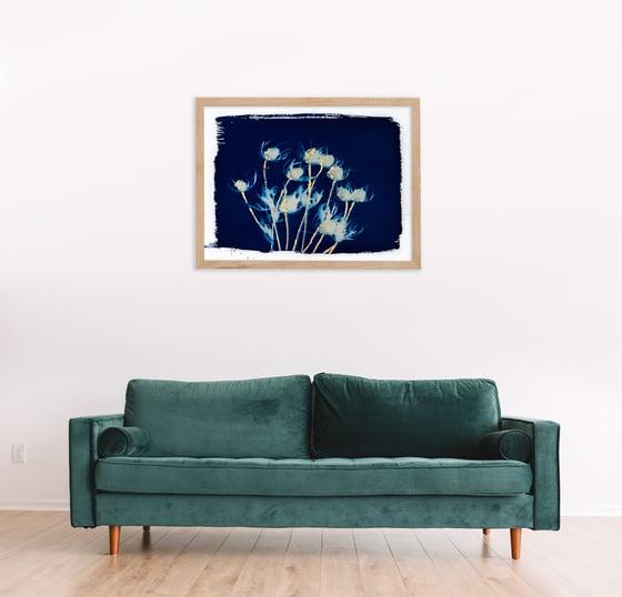 Image of Giclée 24x18 Thistle Cyanotype Print