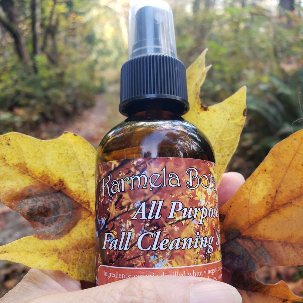 Image of Fall Cleaning Solution