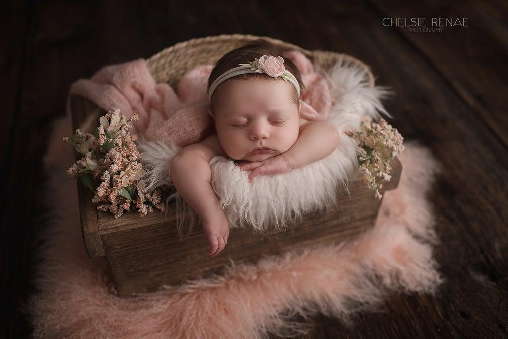 Image of Custom Newborn Session