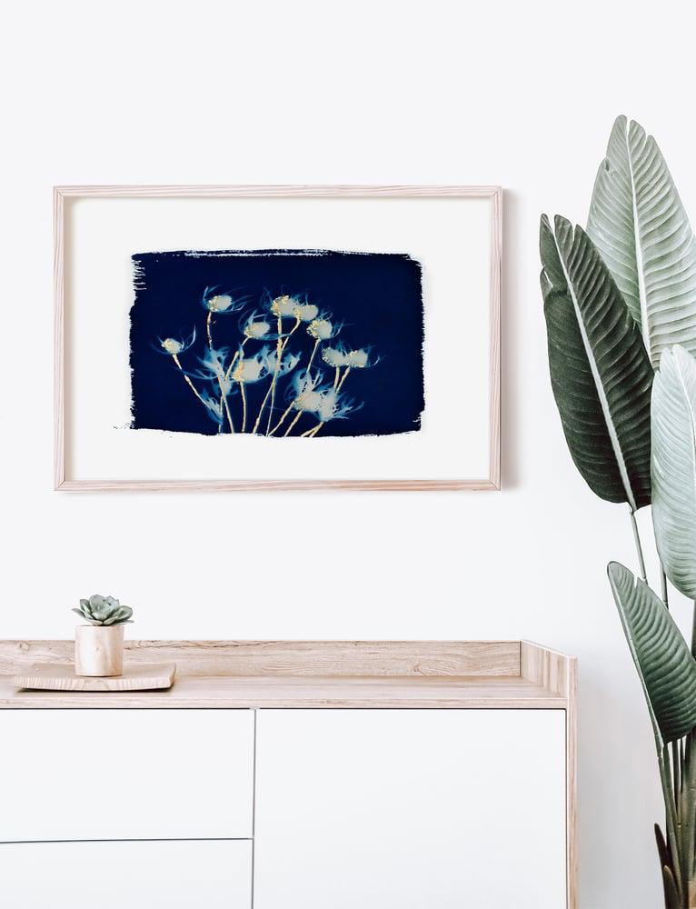 Image of 16x20 Thistle Cyanotype Print