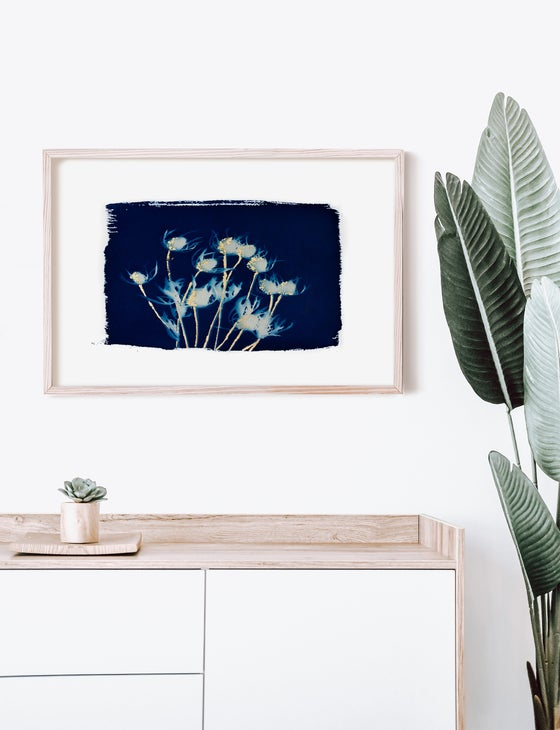 Image of Giclée 16x20 Thistle Cyanotype Print