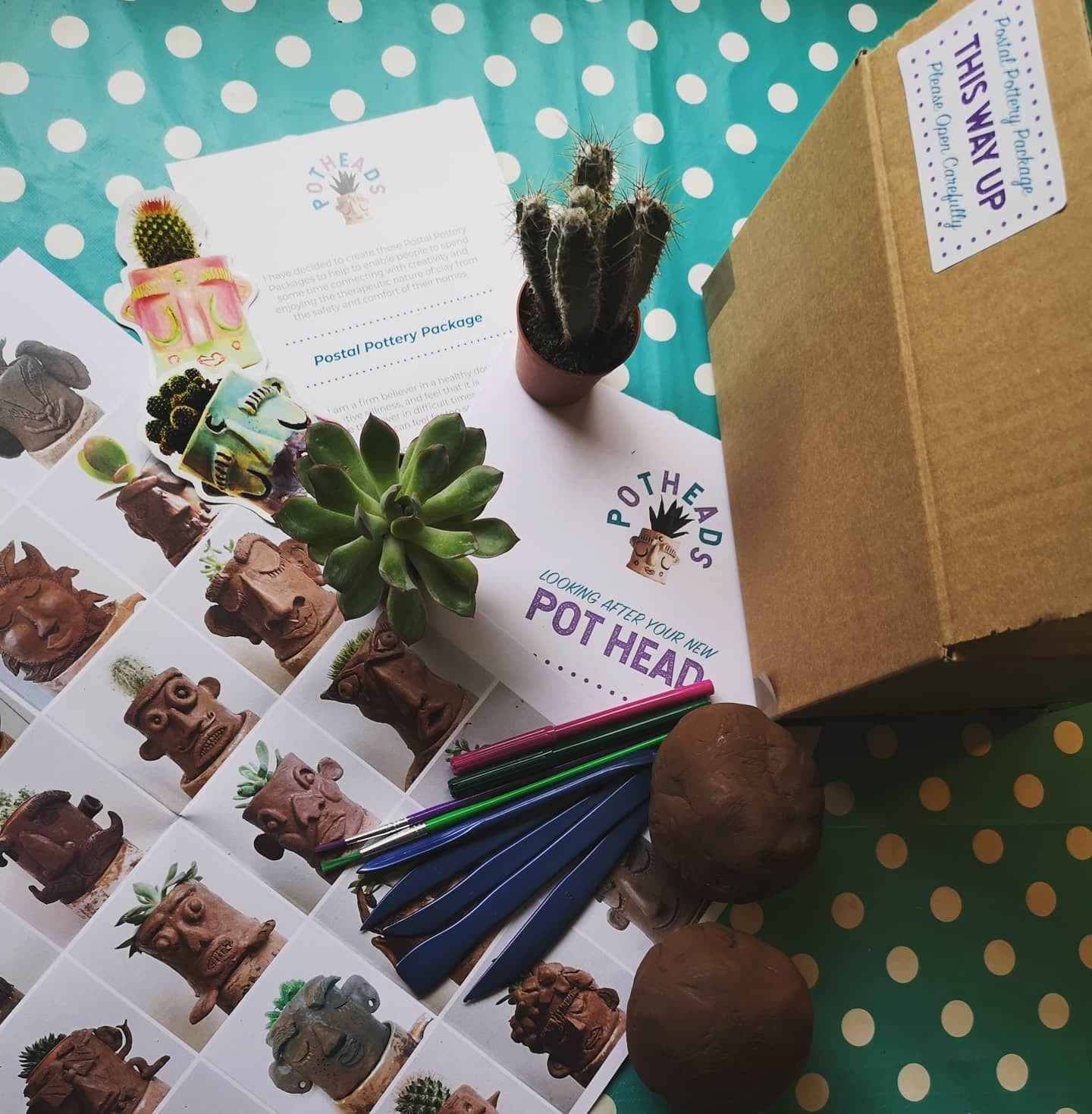Image of Postal Pottery Package - SUNFLOWER EDITION (Donate £10 To SSPC)