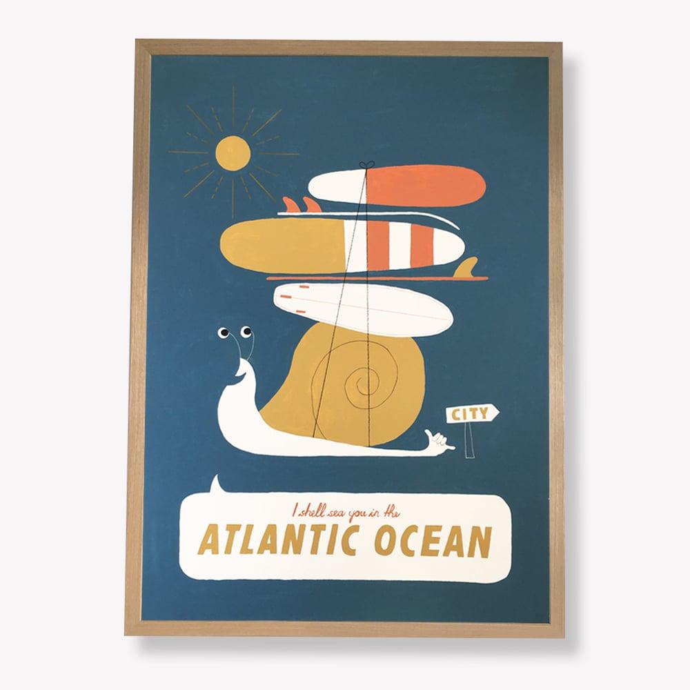 Image of Atlantic Ocean Shell Original Painting