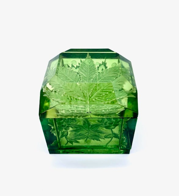 Image of Jumbo Mini Lucite Green Boxes (Two Themes)