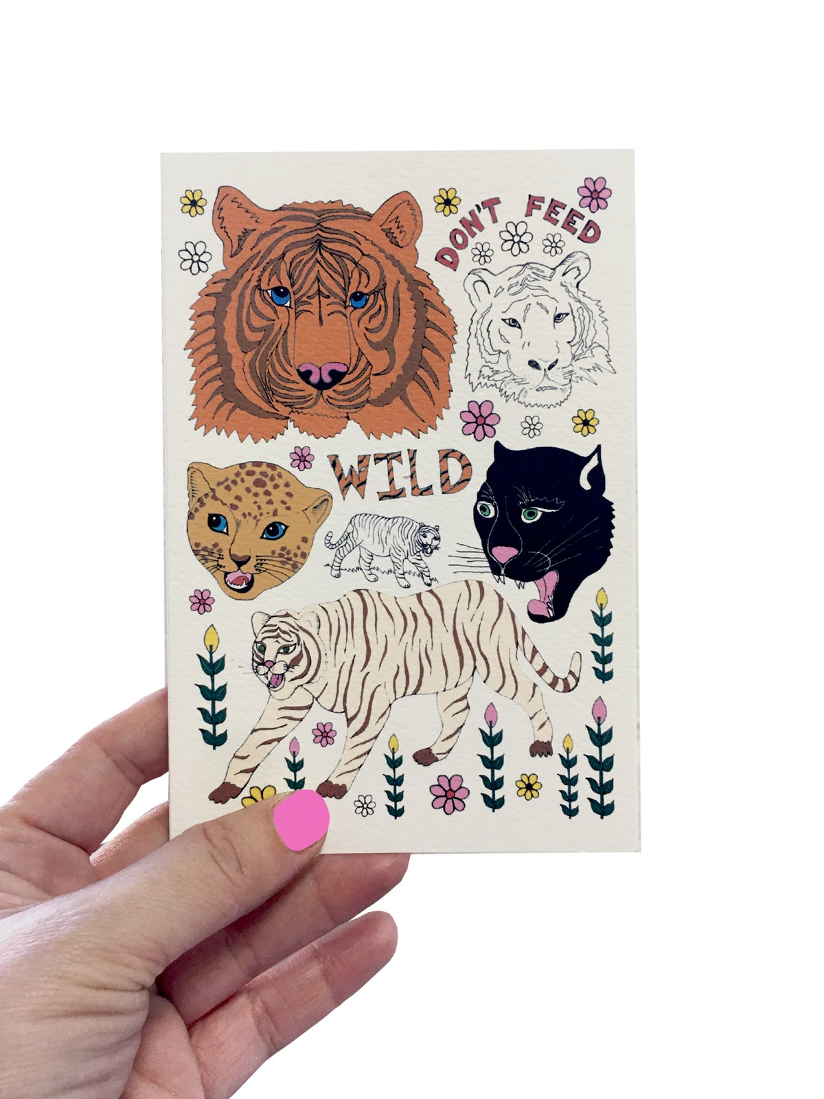 Wild Tiger Flash Card