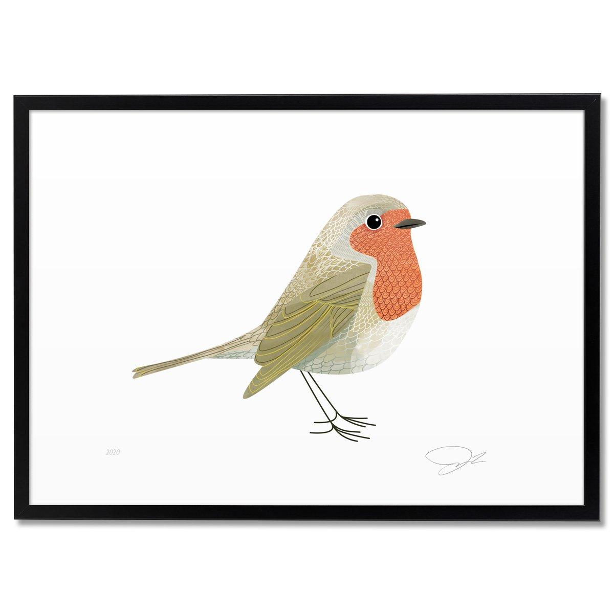 Image of Print: Robin