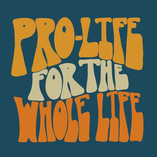 Image of Pro-life for the Whole Life Car Magnet