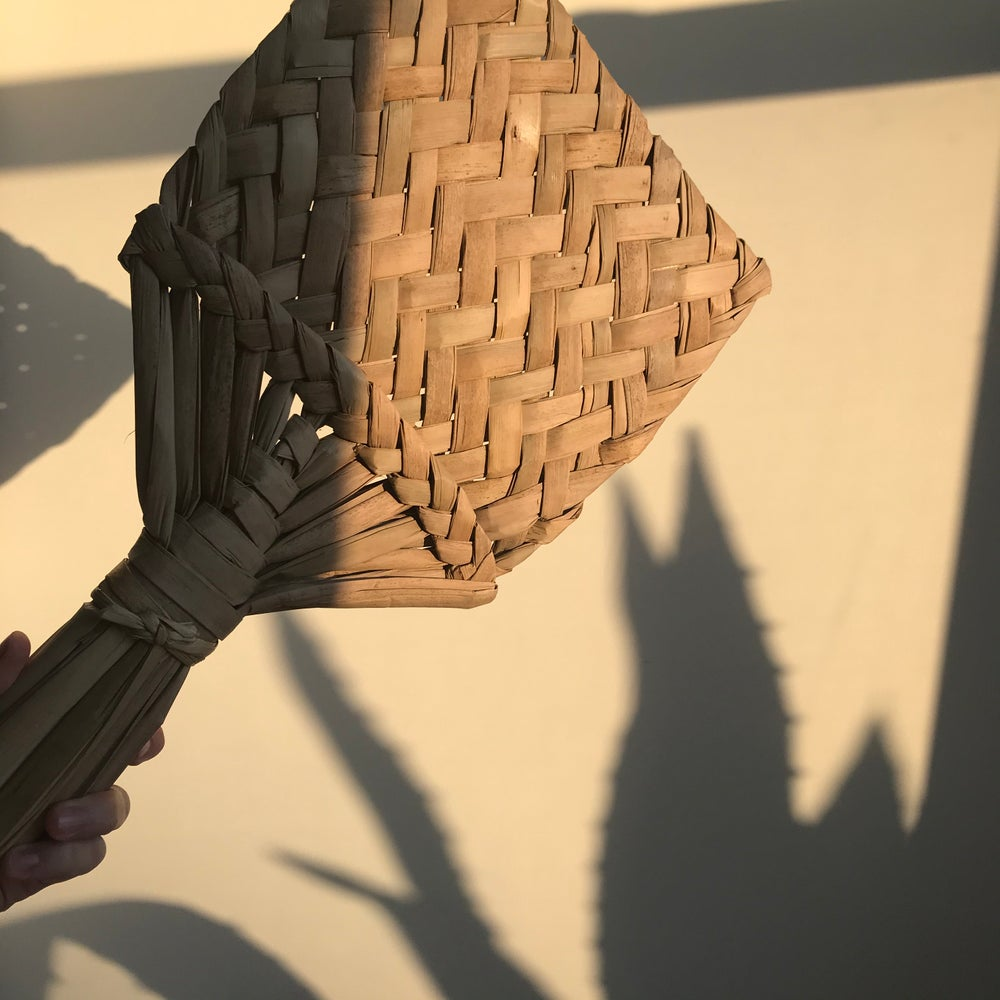 Image of Dried Palm Fan