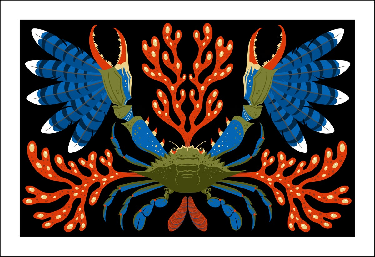 Image of Blueclaw Crab Print