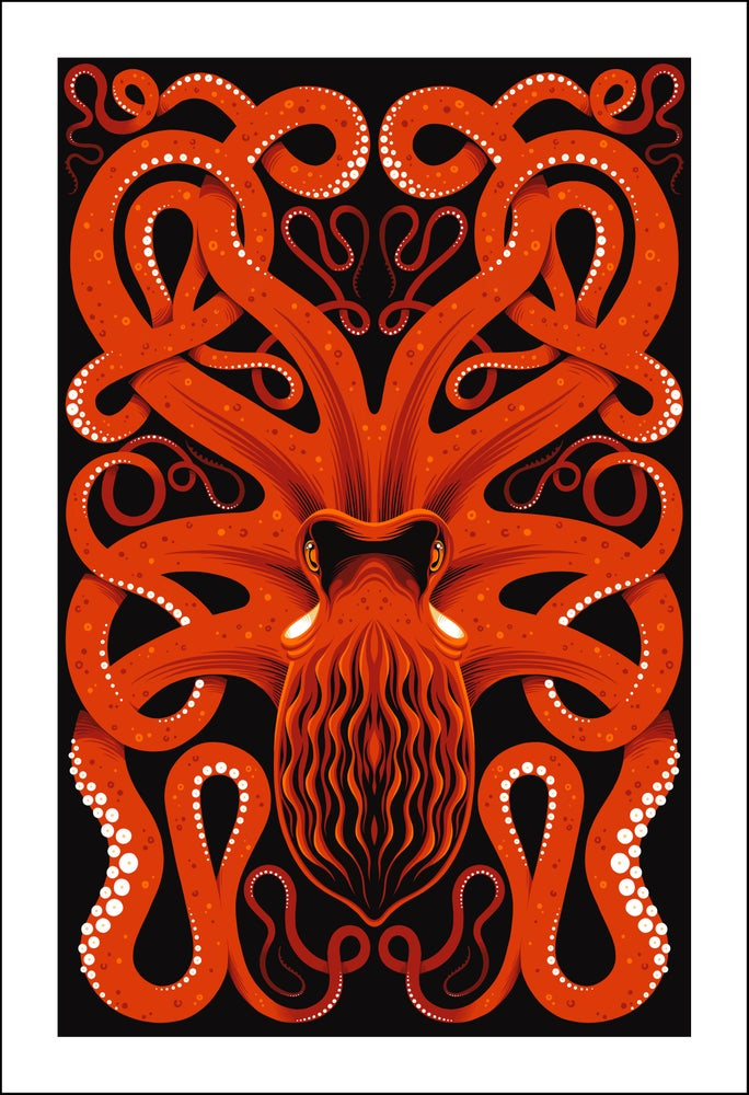 Image of Pacific Octopus Print