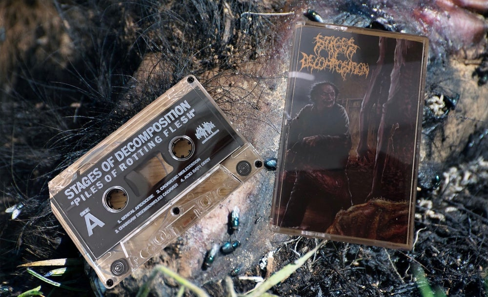Image of Stages of Decomposition- Piles of Rotting Flesh
