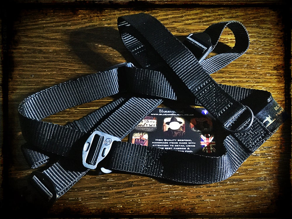 Image of Carry Strap Harness