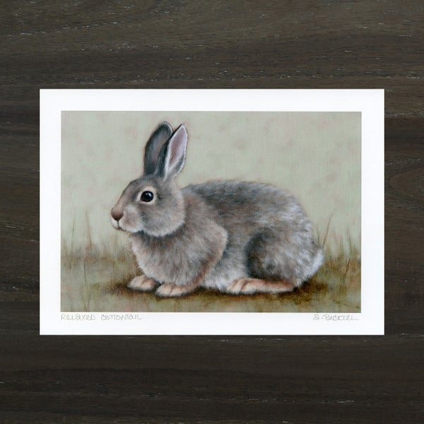"""Image of """"Relaxed Cottontail"""" Mini Art Print"""
