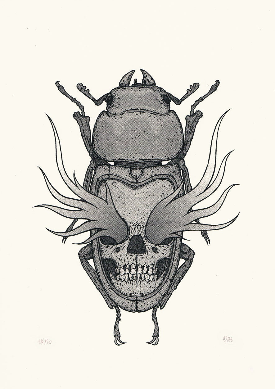 Image of THE BUG