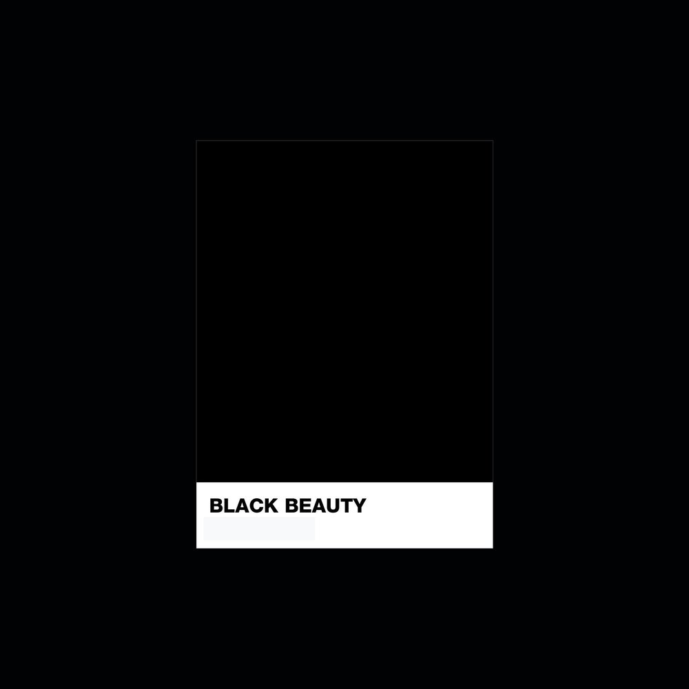 Image of Black Beauty Mask