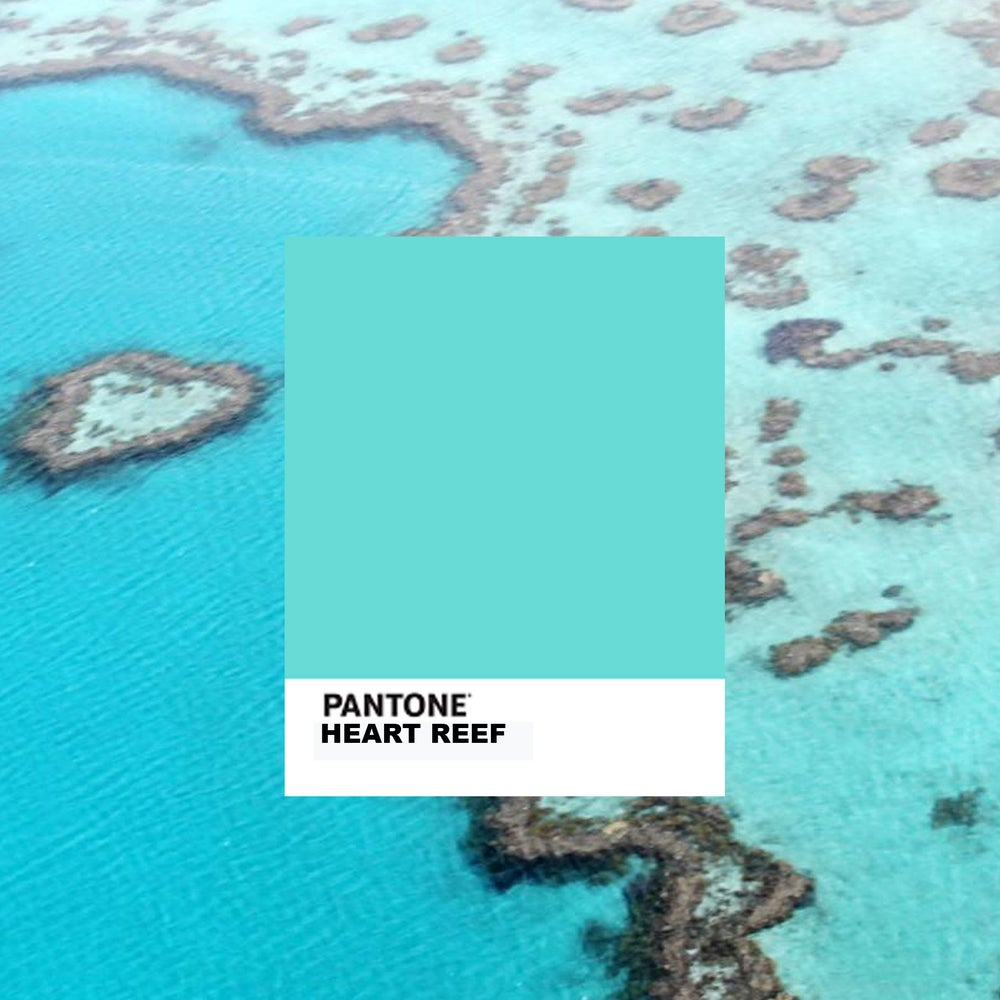 Image of Heart Reef Mask (incl. VAT)