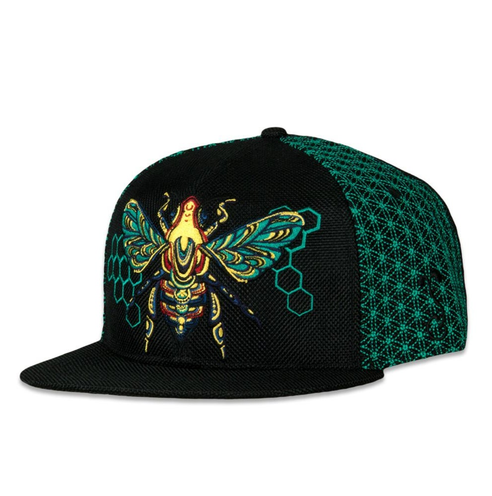 Image of NEW GRASSROOTS HONEY BEE TEAL FITTED HAT
