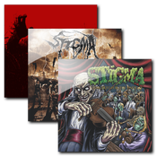 Image of STIGMA R.I.P - Full Discography at discounte price!!