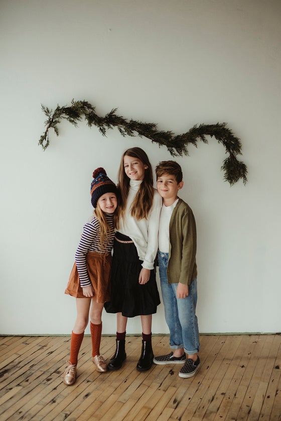 Image of Holiday Mini sessions!