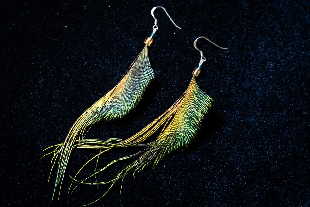 Image of Peacock Sword Feather Earrings
