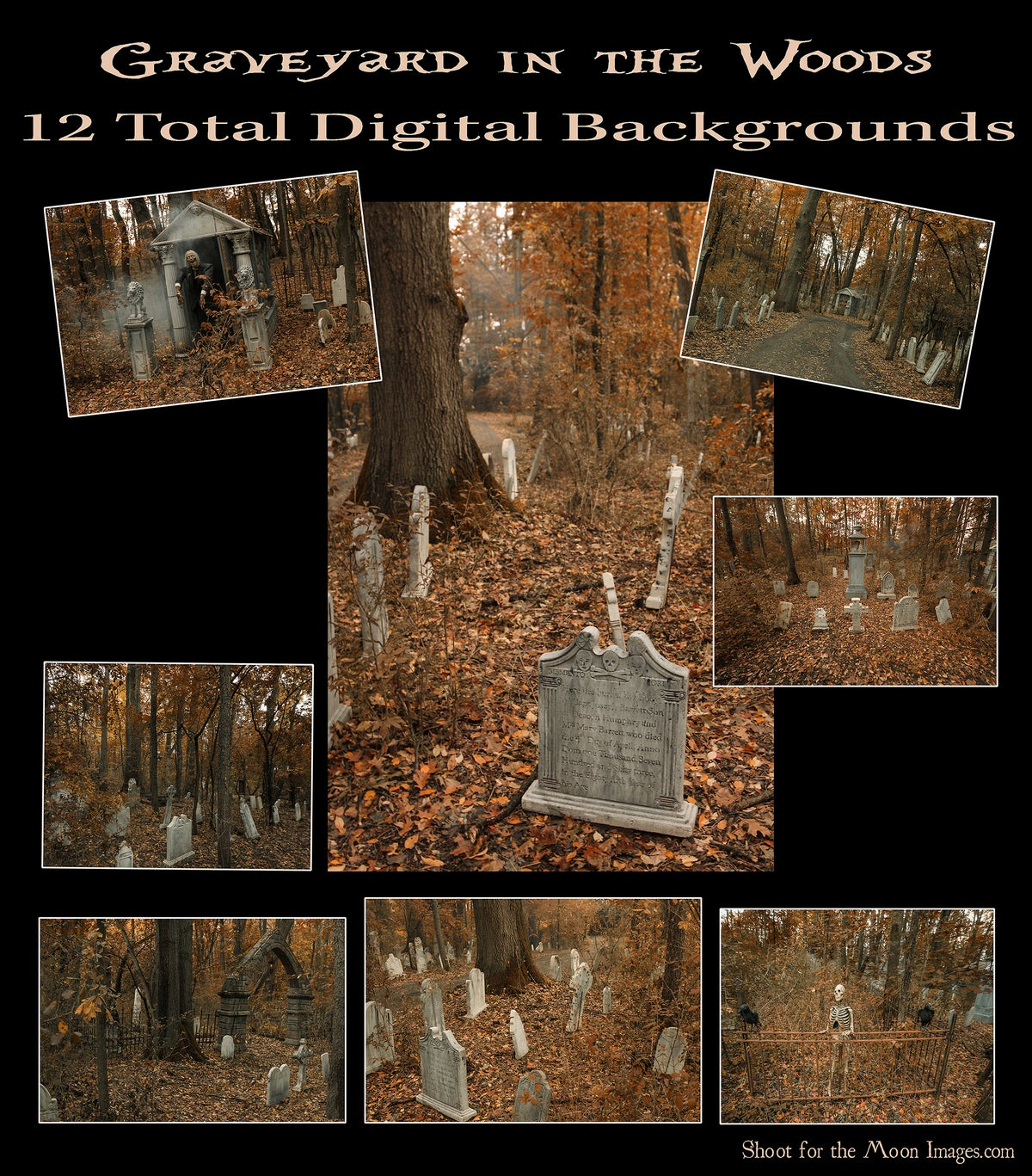 Image of Graveyard in the Woods DIGITAL BACKGROUNDS
