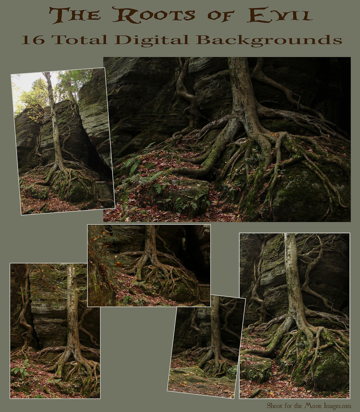 Image of The Roots of Evil DIGITAL BACKGROUNDS